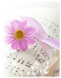 コスモスと楽譜